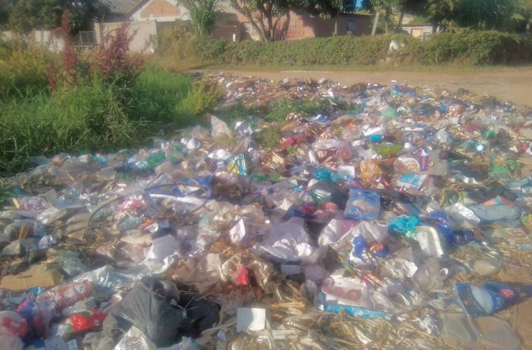 War on Poverty: Ward 17, Chitungwiza North